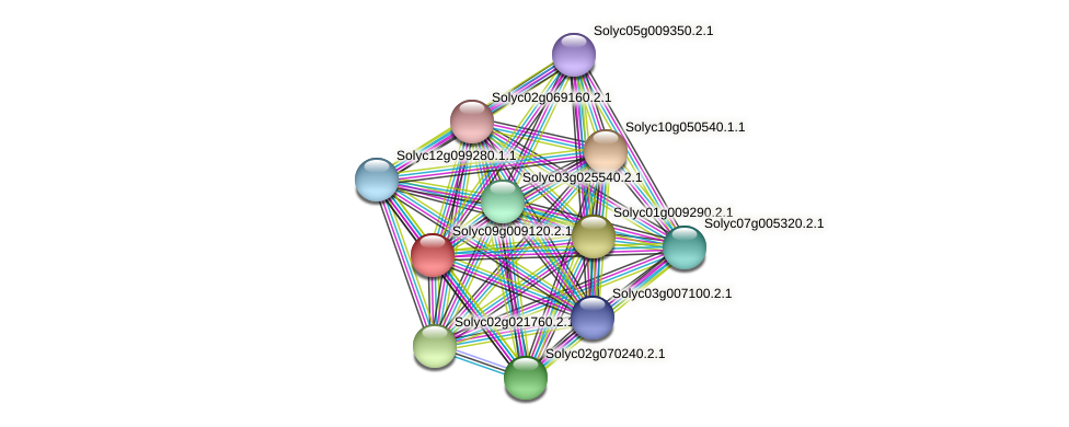 Solyc09g009120.2.1 protein (Solanum lycopersicum) - STRING interaction network