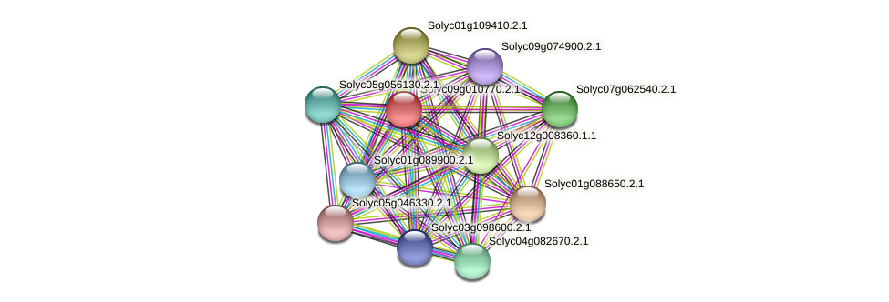 Solyc09g010770.2.1 protein (Solanum lycopersicum) - STRING interaction network