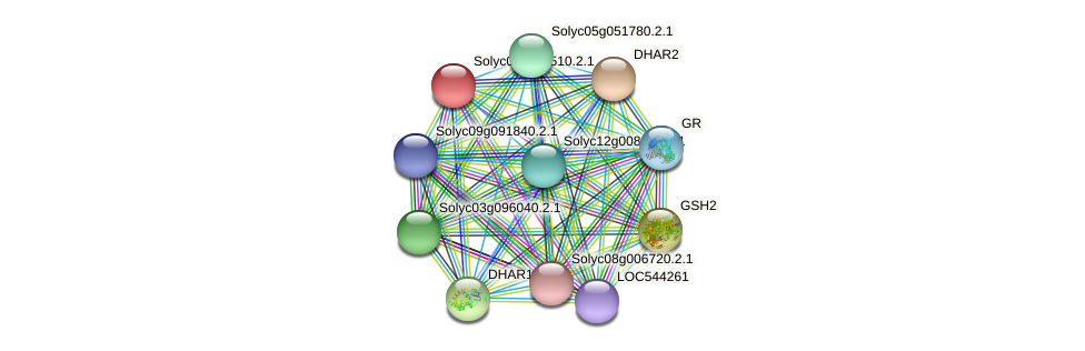 Solyc09g011510.2.1 protein (Solanum lycopersicum) - STRING interaction network