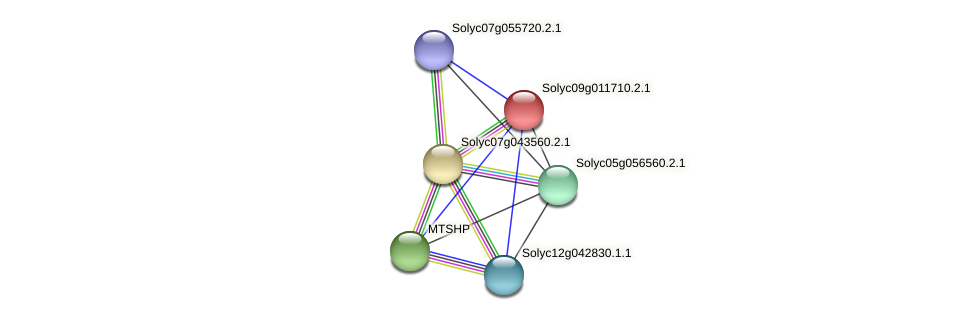 Solyc09g011710.2.1 protein (Solanum lycopersicum) - STRING interaction network