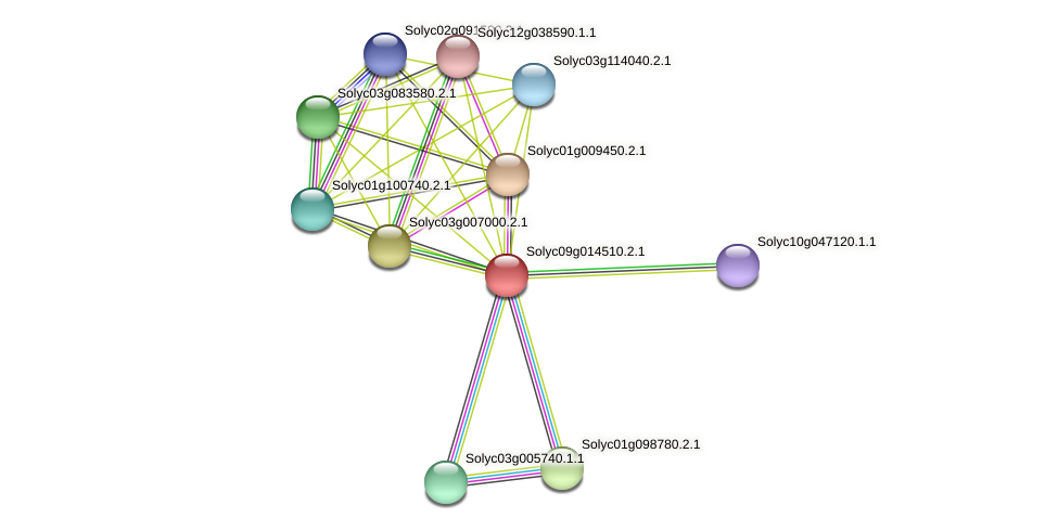 Solyc09g014510.2.1 protein (Solanum lycopersicum) - STRING interaction network