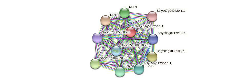 Solyc09g031760.1.1 protein (Solanum lycopersicum) - STRING interaction network