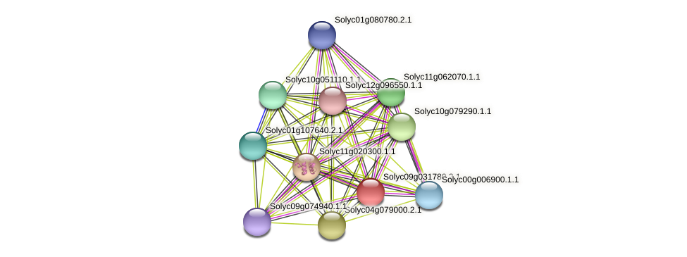 Solyc09g031780.2.1 protein (Solanum lycopersicum) - STRING interaction network