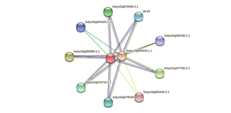 Solyc09g042700.2.1 protein (Solanum lycopersicum) - STRING interaction network