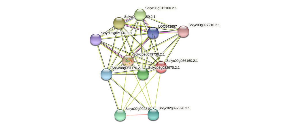 Solyc09g056160.2.1 protein (Solanum lycopersicum) - STRING interaction network