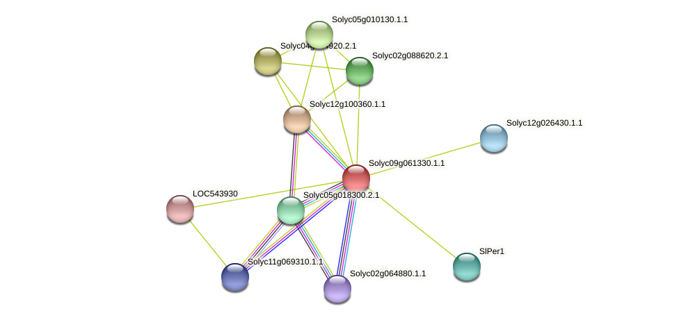 Solyc09g061330.1.1 protein (Solanum lycopersicum) - STRING interaction network