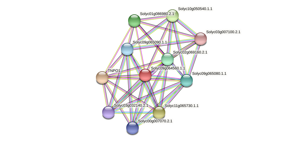 Solyc09g064560.1.1 protein (Solanum lycopersicum) - STRING interaction network