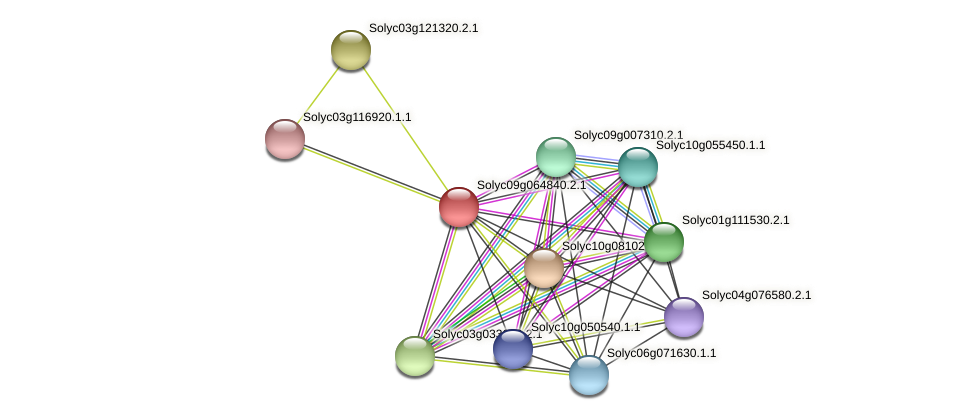 Solyc09g064840.2.1 protein (Solanum lycopersicum) - STRING interaction network