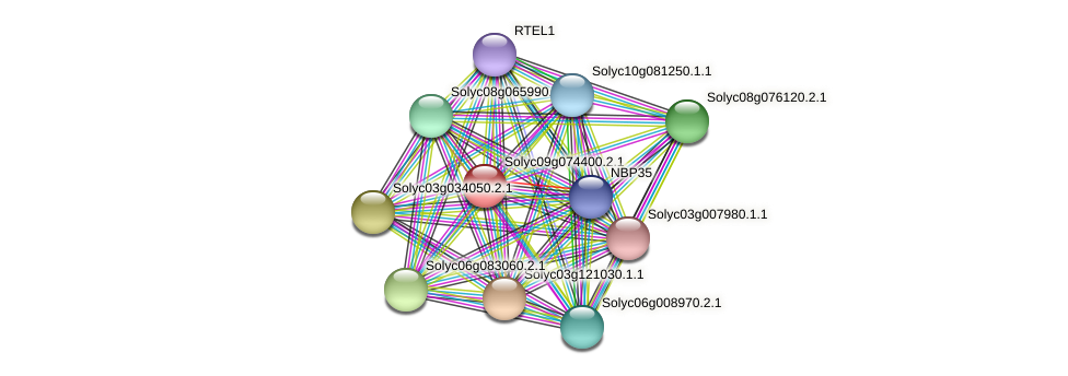 Solyc09g074400.2.1 protein (Solanum lycopersicum) - STRING interaction network
