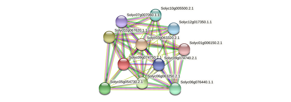 Solyc09g074750.2.1 protein (Solanum lycopersicum) - STRING interaction network