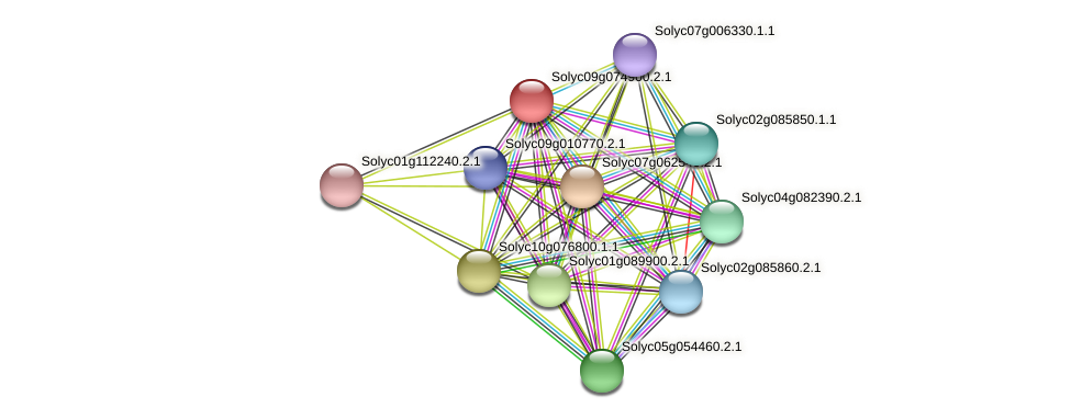 Solyc09g074900.2.1 protein (Solanum lycopersicum) - STRING interaction network