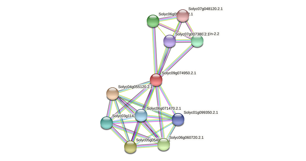 Solyc09g074950.2.1 protein (Solanum lycopersicum) - STRING interaction network
