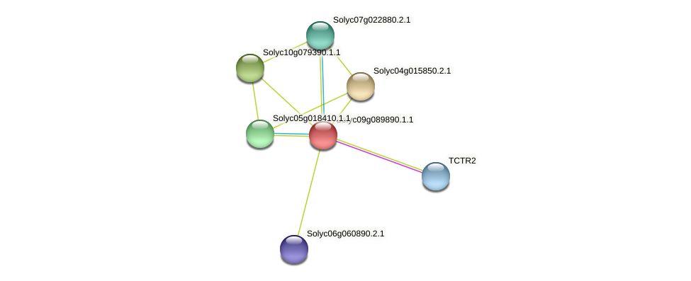 Solyc09g089890.1.1 protein (Solanum lycopersicum) - STRING interaction network
