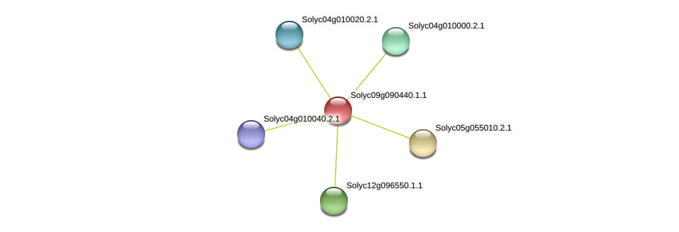 Solyc09g090440.1.1 protein (Solanum lycopersicum) - STRING interaction network