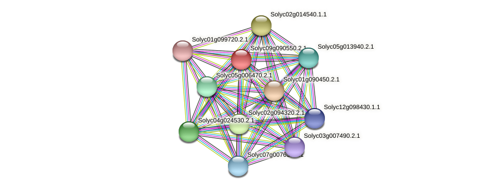 Solyc09g090550.2.1 protein (Solanum lycopersicum) - STRING interaction network