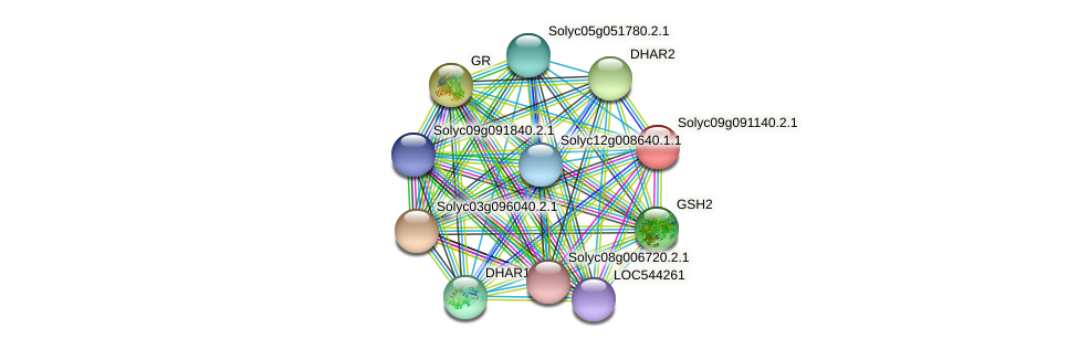 Solyc09g091140.2.1 protein (Solanum lycopersicum) - STRING interaction network