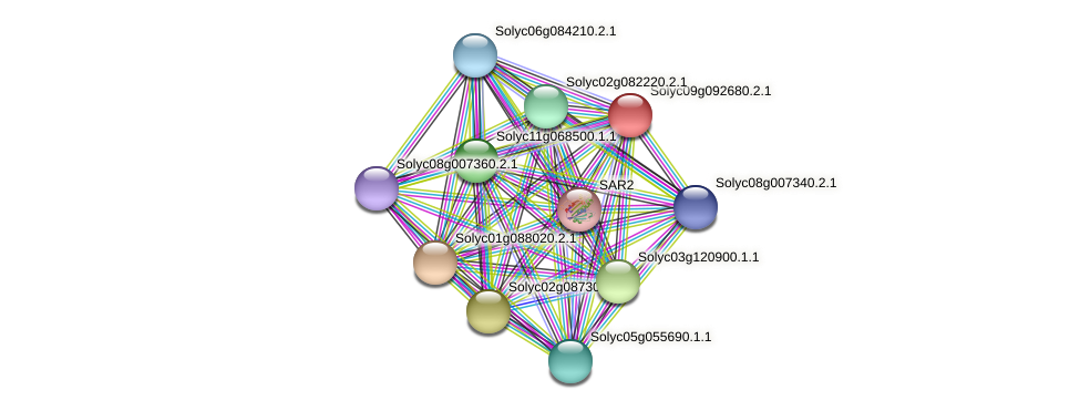 Solyc09g092680.2.1 protein (Solanum lycopersicum) - STRING interaction network