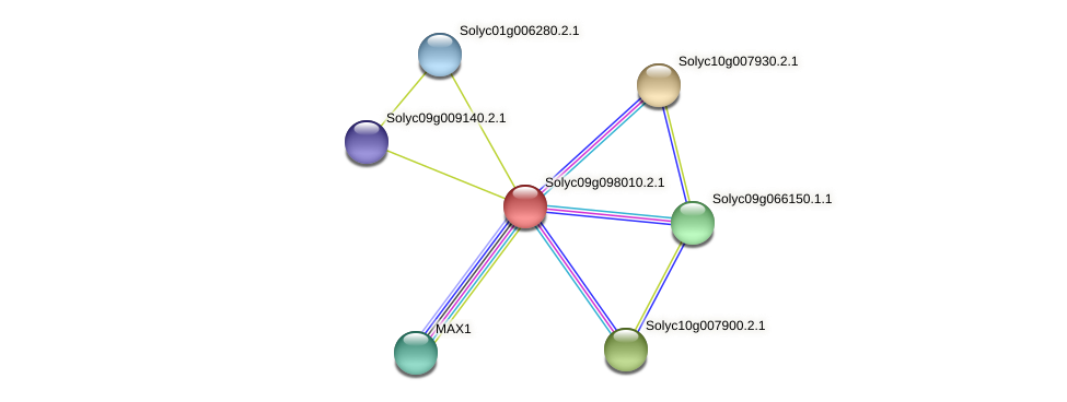Solyc09g098010.2.1 protein (Solanum lycopersicum) - STRING interaction network
