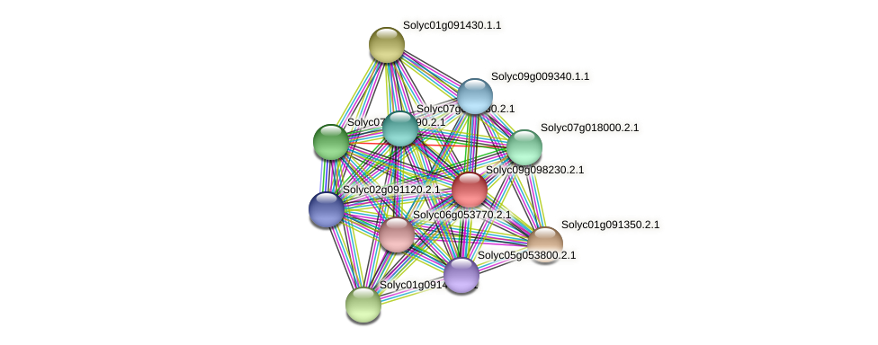 101260670 protein (Solanum lycopersicum) - STRING interaction network