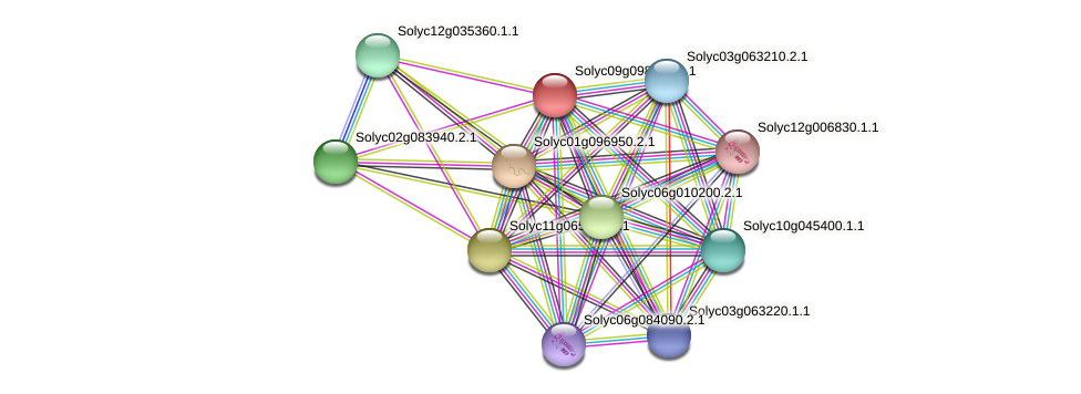 Solyc09g098260.1.1 protein (Solanum lycopersicum) - STRING interaction network