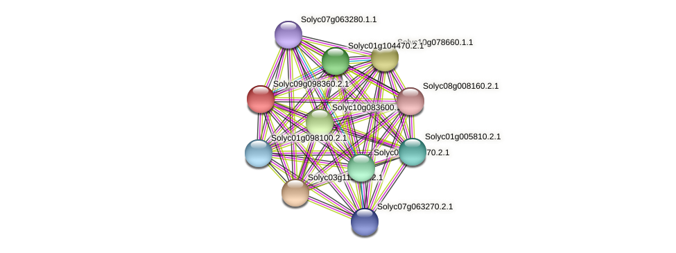 Solyc09g098360.2.1 protein (Solanum lycopersicum) - STRING interaction network