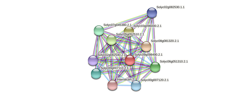 Solyc09g098490.2.1 protein (Solanum lycopersicum) - STRING interaction network