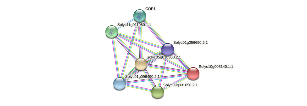 Solyc10g005140.1.1 protein (Solanum lycopersicum) - STRING interaction network