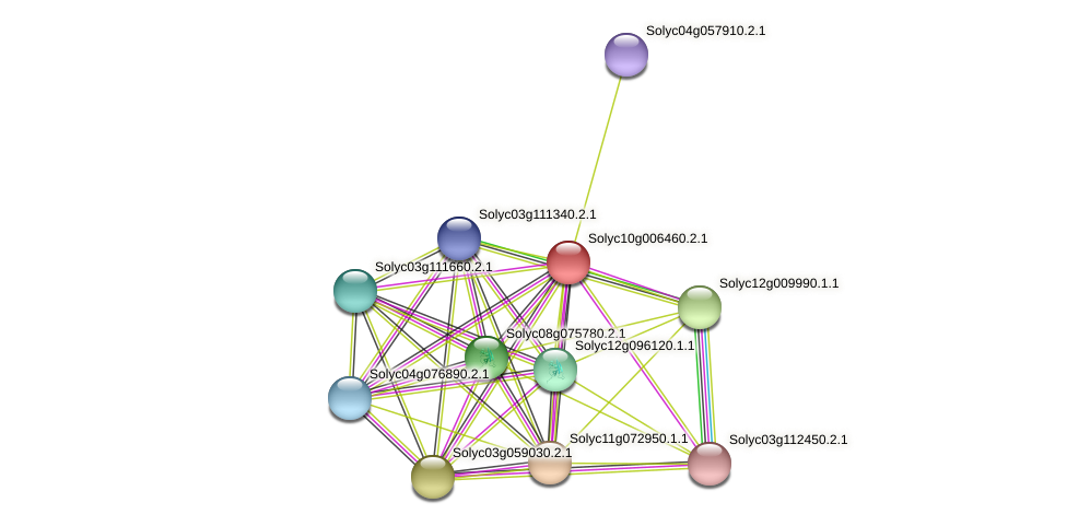 Solyc10g006460.2.1 protein (Solanum lycopersicum) - STRING interaction network
