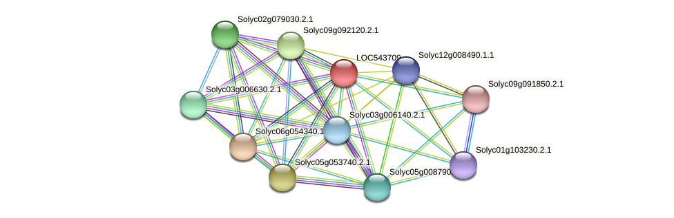 LOC543709 protein (Solanum lycopersicum) - STRING interaction network