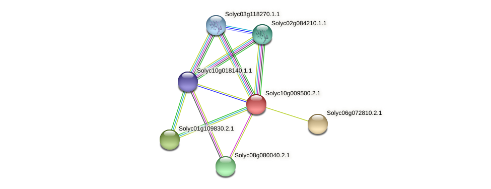 Solyc10g009500.2.1 protein (Solanum lycopersicum) - STRING interaction network