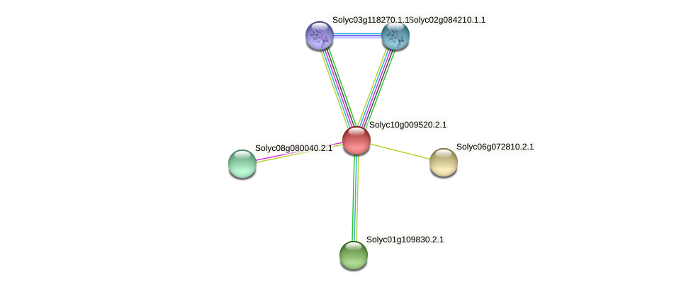 Solyc10g009520.2.1 protein (Solanum lycopersicum) - STRING interaction network