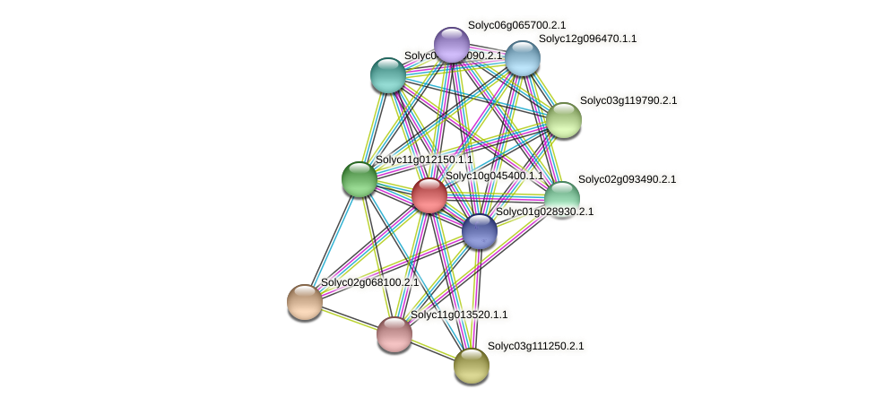Solyc10g045400.1.1 protein (Solanum lycopersicum) - STRING interaction network