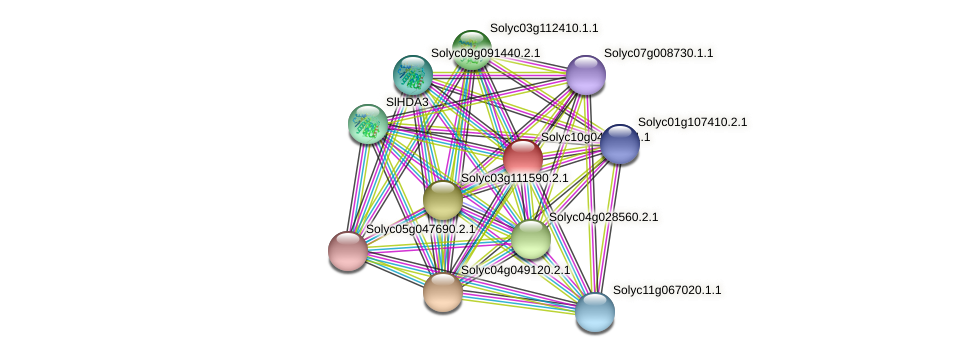 Solyc10g047970.1.1 protein (Solanum lycopersicum) - STRING interaction network