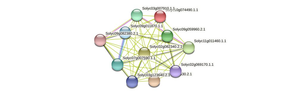 Solyc10g074490.1.1 protein (Solanum lycopersicum) - STRING interaction network