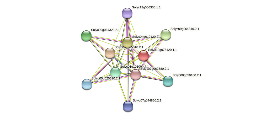 Solyc10g076420.1.1 protein (Solanum lycopersicum) - STRING interaction network