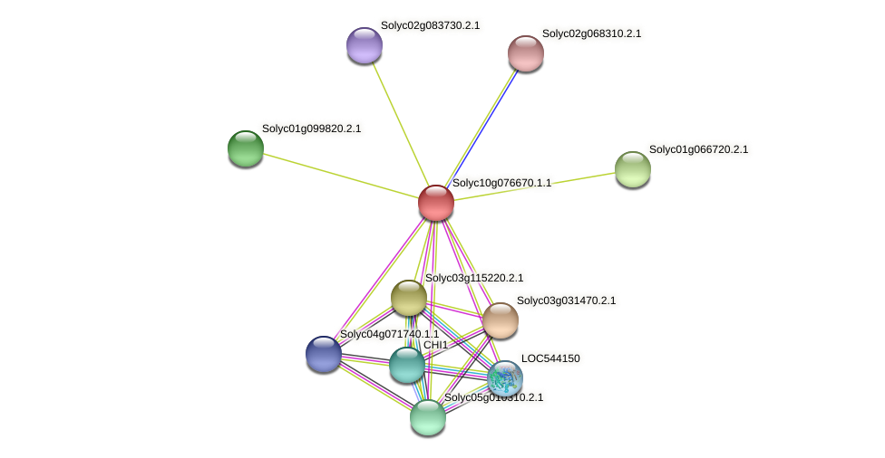 Solyc10g076670.1.1 protein (Solanum lycopersicum) - STRING interaction network