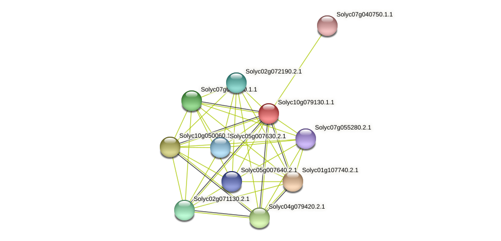 101260188 protein (Solanum lycopersicum) - STRING interaction network
