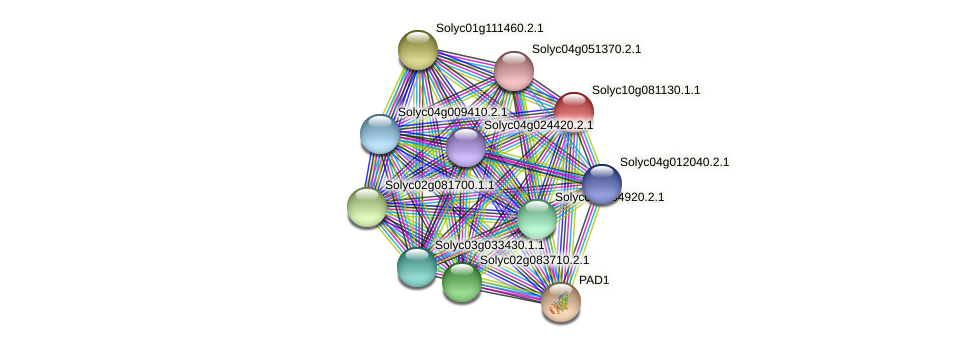 Solyc10g081130.1.1 protein (Solanum lycopersicum) - STRING interaction network