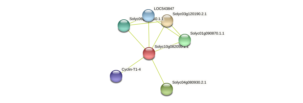 Solyc10g082050.1.1 protein (Solanum lycopersicum) - STRING interaction network