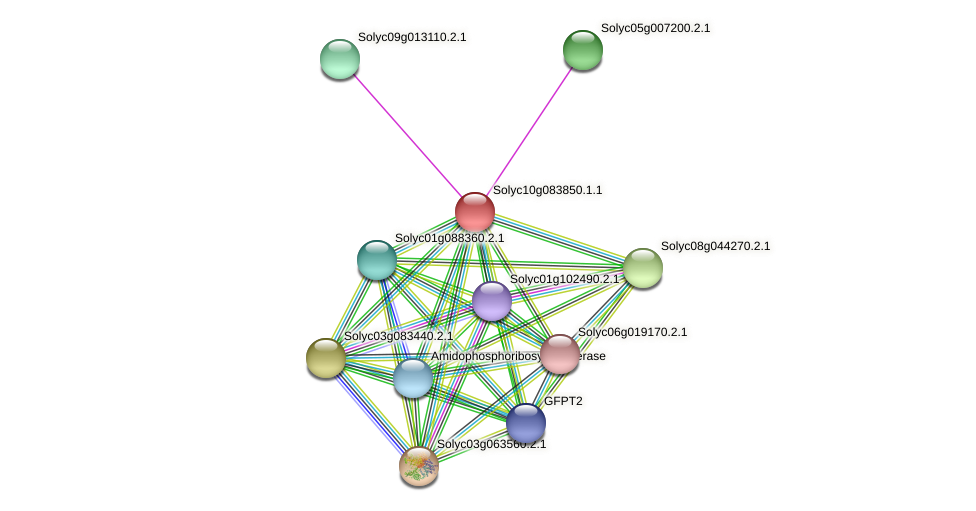 Solyc10g083850.1.1 protein (Solanum lycopersicum) - STRING interaction network