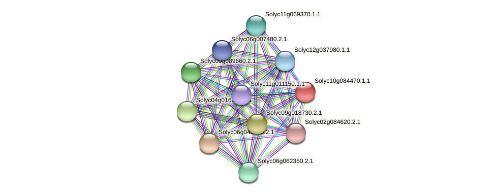 Solyc10g084470.1.1 protein (Solanum lycopersicum) - STRING interaction network