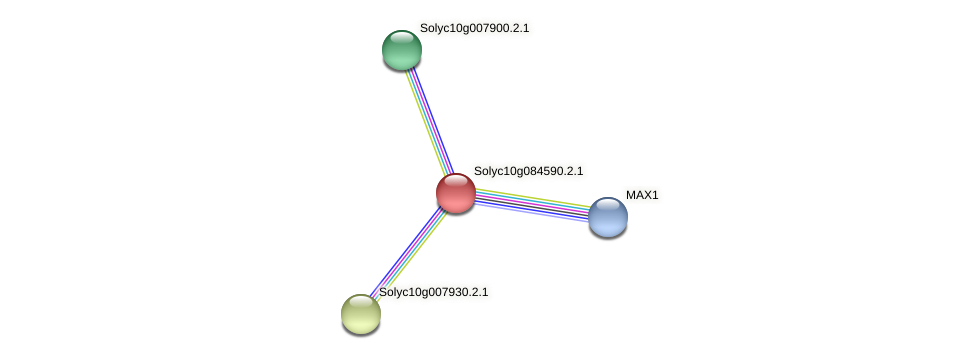 Solyc10g084590.2.1 protein (Solanum lycopersicum) - STRING interaction network