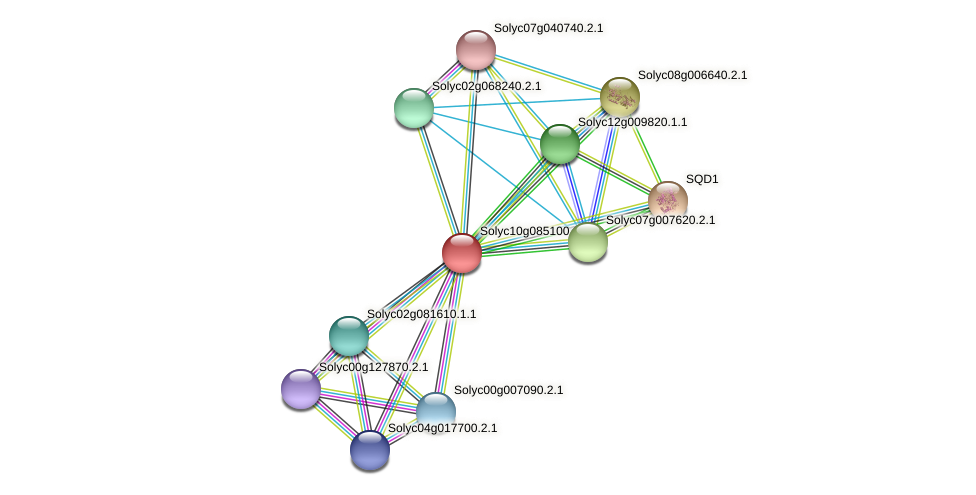 Solyc10g085100.1.1 protein (Solanum lycopersicum) - STRING interaction network
