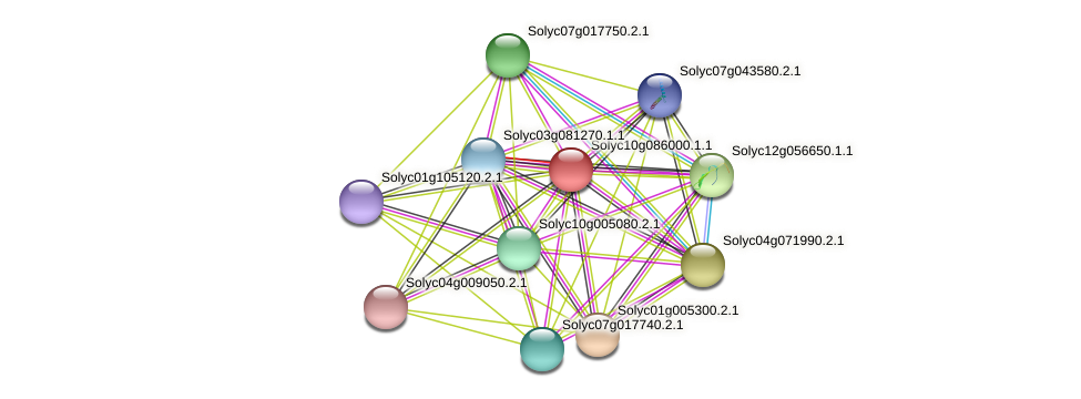 Solyc10g086000.1.1 protein (Solanum lycopersicum) - STRING interaction network