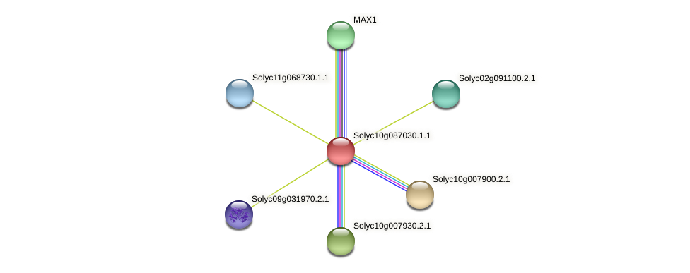 Solyc10g087030.1.1 protein (Solanum lycopersicum) - STRING interaction network
