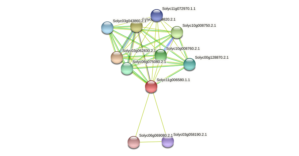 Solyc11g006580.1.1 protein (Solanum lycopersicum) - STRING interaction network
