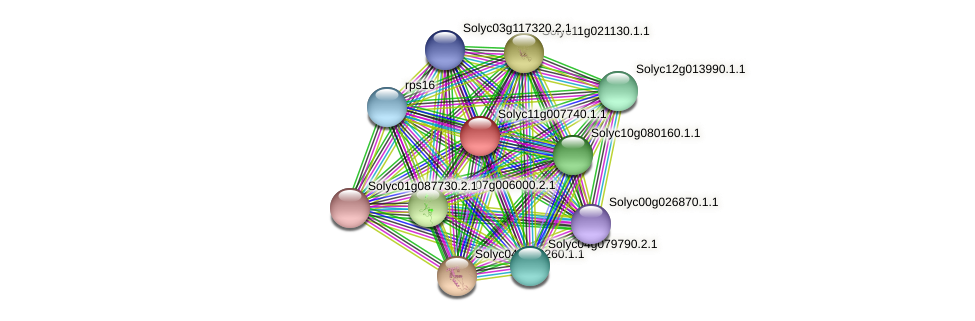 Solyc11g007740.1.1 protein (Solanum lycopersicum) - STRING interaction network