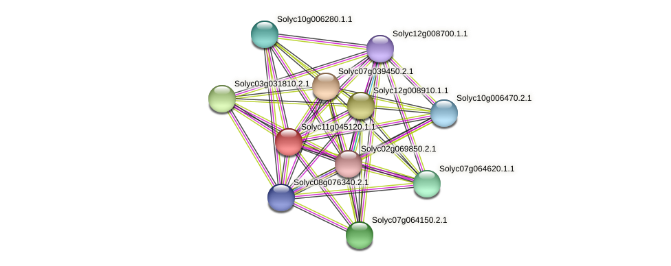 Solyc11g045120.1.1 protein (Solanum lycopersicum) - STRING interaction network