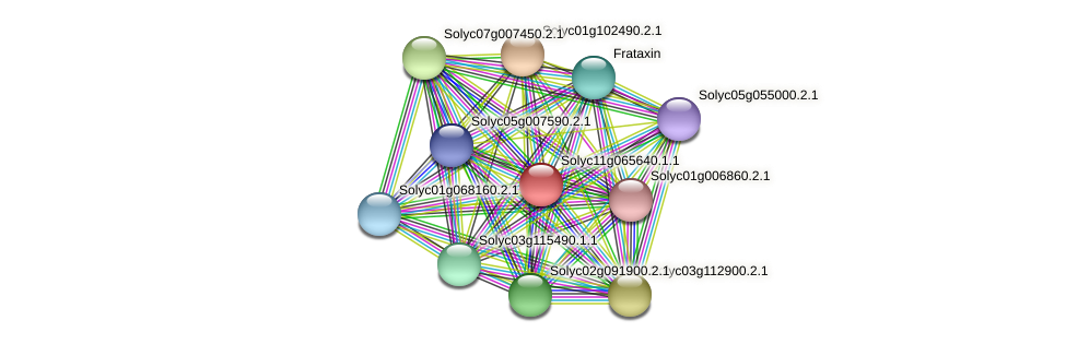 101246790 protein (Solanum lycopersicum) - STRING interaction network