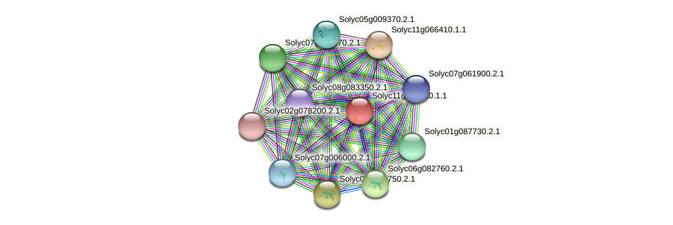 Solyc11g068820.1.1 protein (Solanum lycopersicum) - STRING interaction network